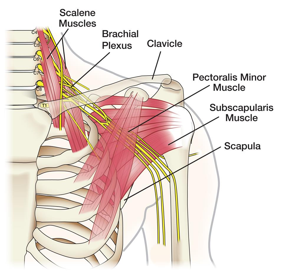 Exercises and Treatment for shoulder impingement pain relief
